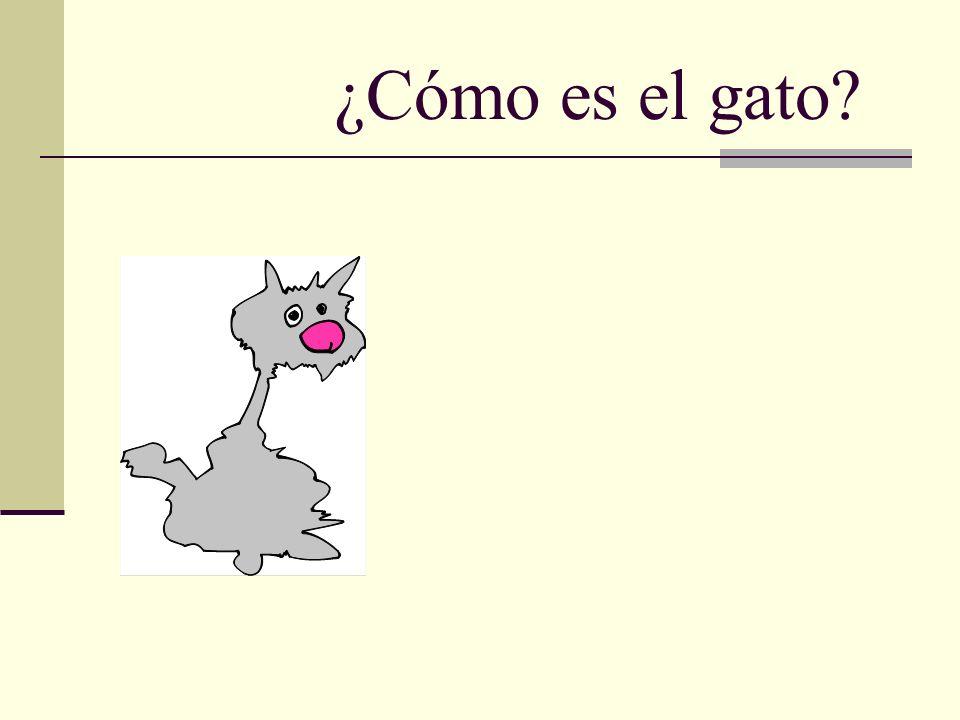 ¿Cómo es el gato