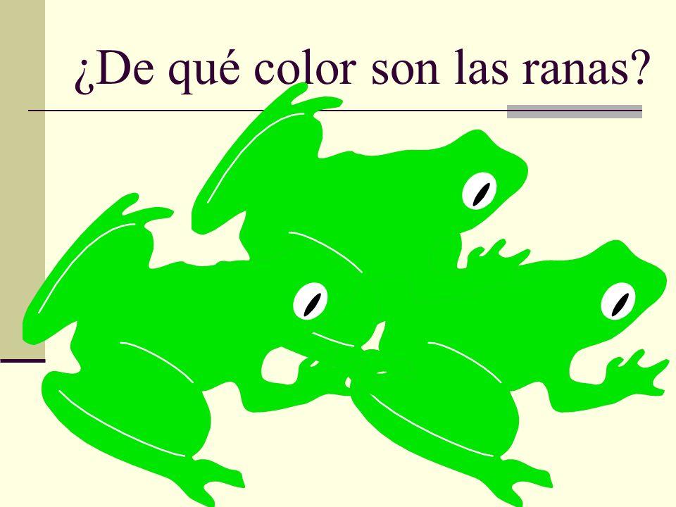 ¿De qué color son las ranas