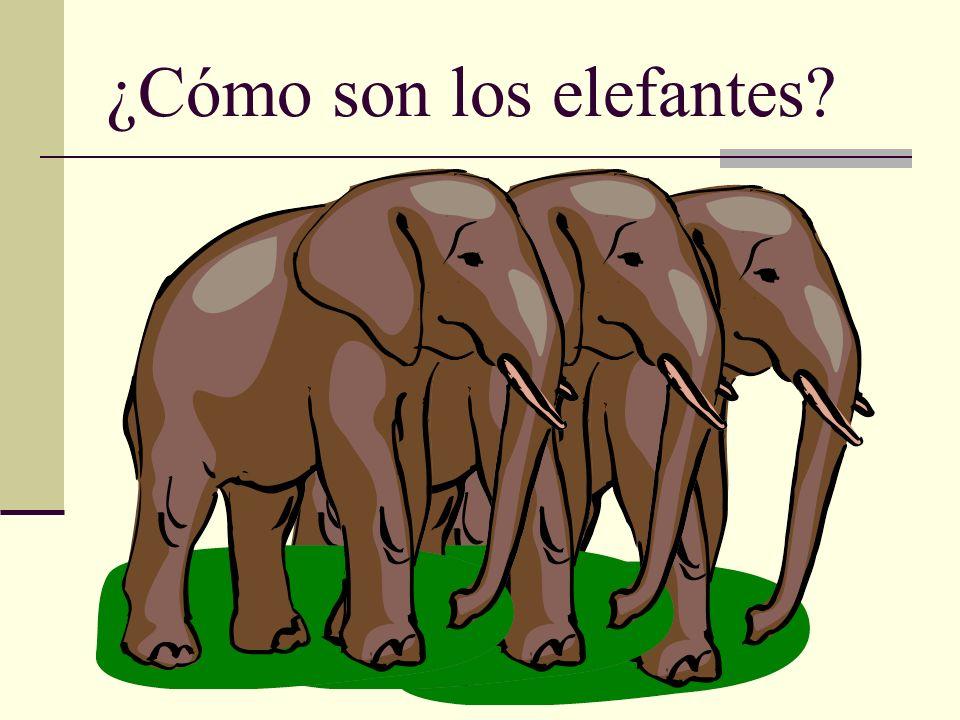 ¿Cómo son los elefantes