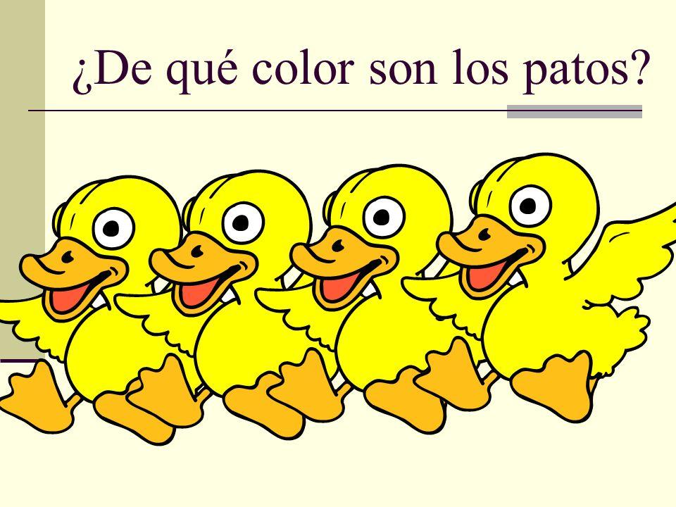 ¿De qué color son los patos