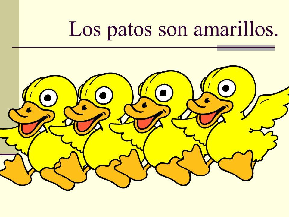 Los patos son amarillos.