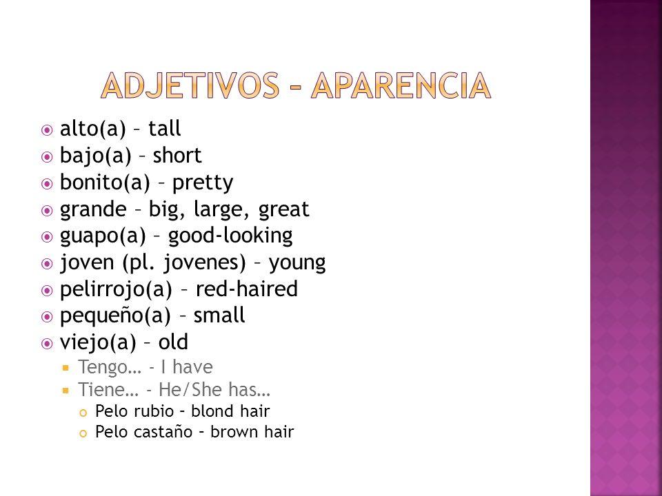 Adjetivos – aparencia alto(a) – tall bajo(a) – short