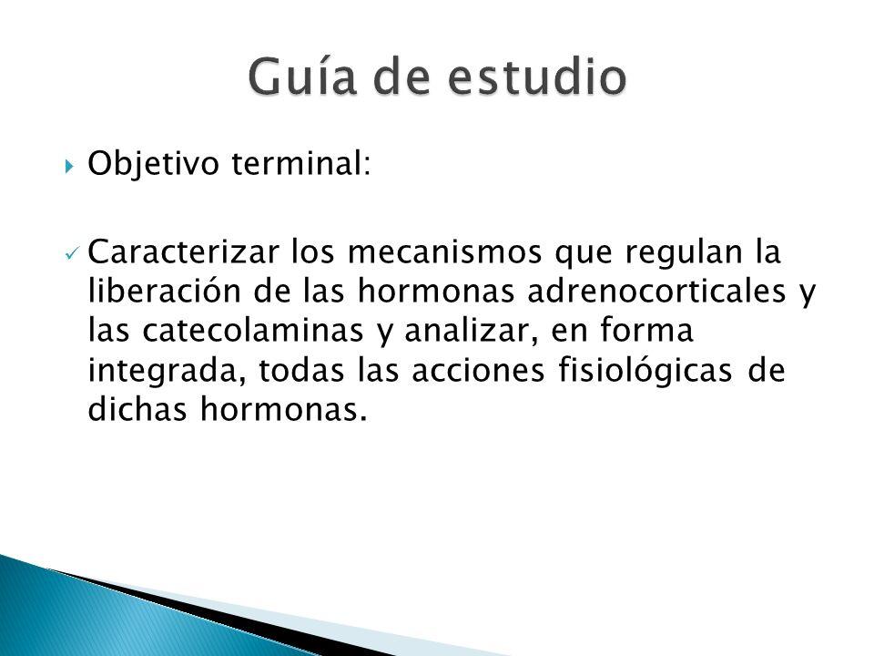 Guía de estudio Objetivo terminal: