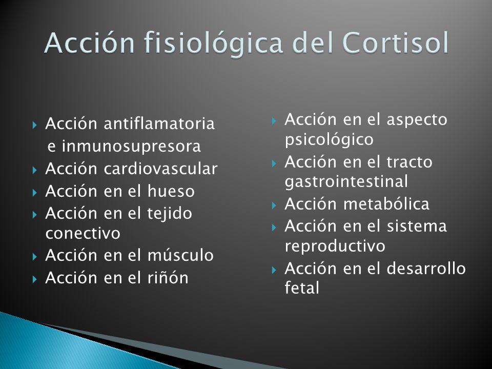 Acción fisiológica del Cortisol