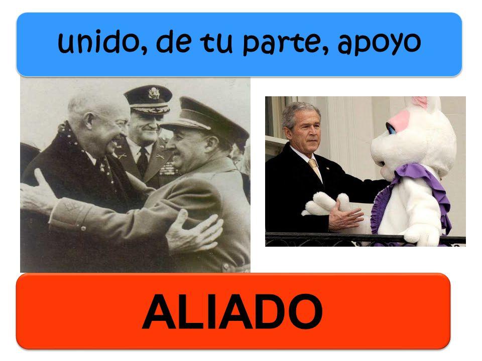 unido, de tu parte, apoyo ALIADO