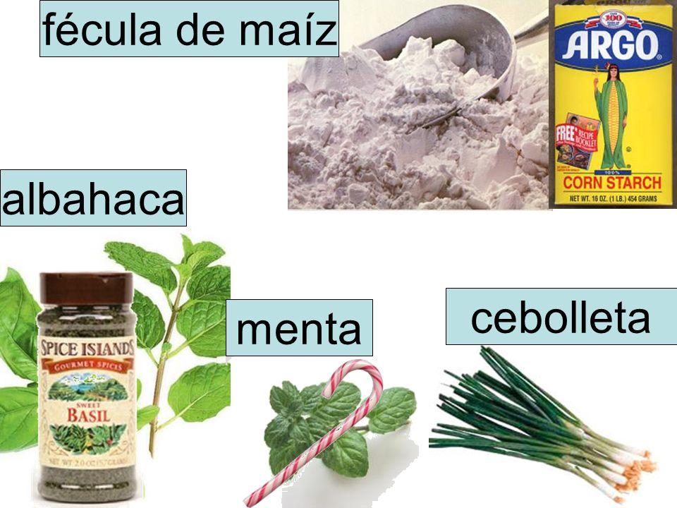 fécula de maíz albahaca cebolleta menta