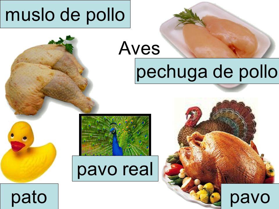 muslo de pollo Aves pechuga de pollo pavo real pato pavo