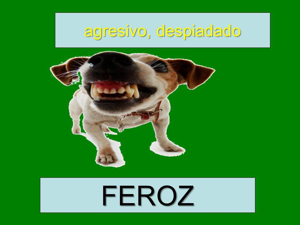 agresivo, despiadado FEROZ