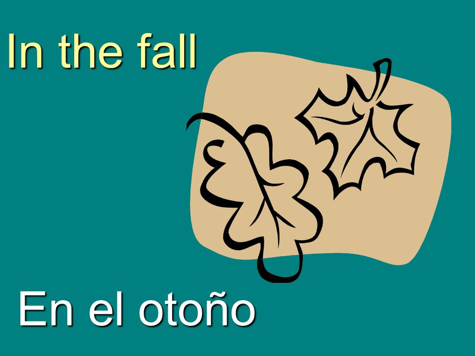 In the fall En el otoño