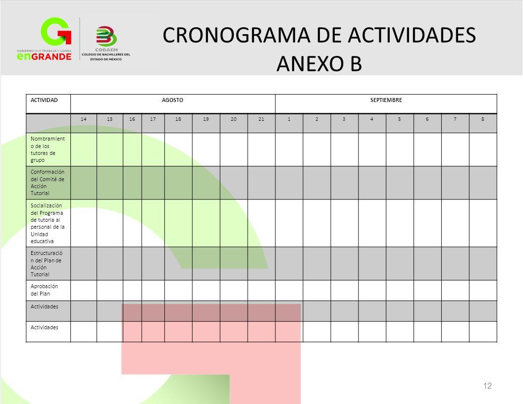 CRONOGRAMA DE ACTIVIDADES ANEXO B
