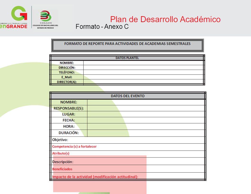 Formato - Anexo C