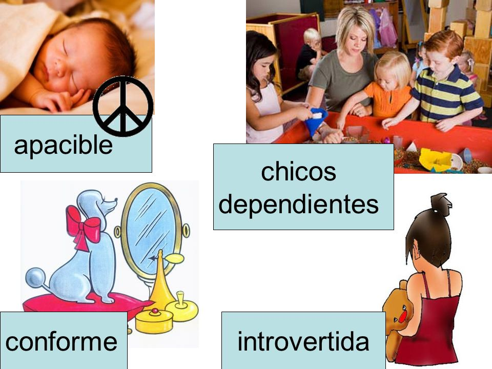 apacible chicos dependientes conforme introvertida