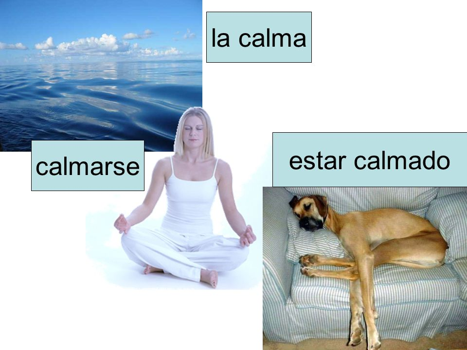 la calma estar calmado calmarse