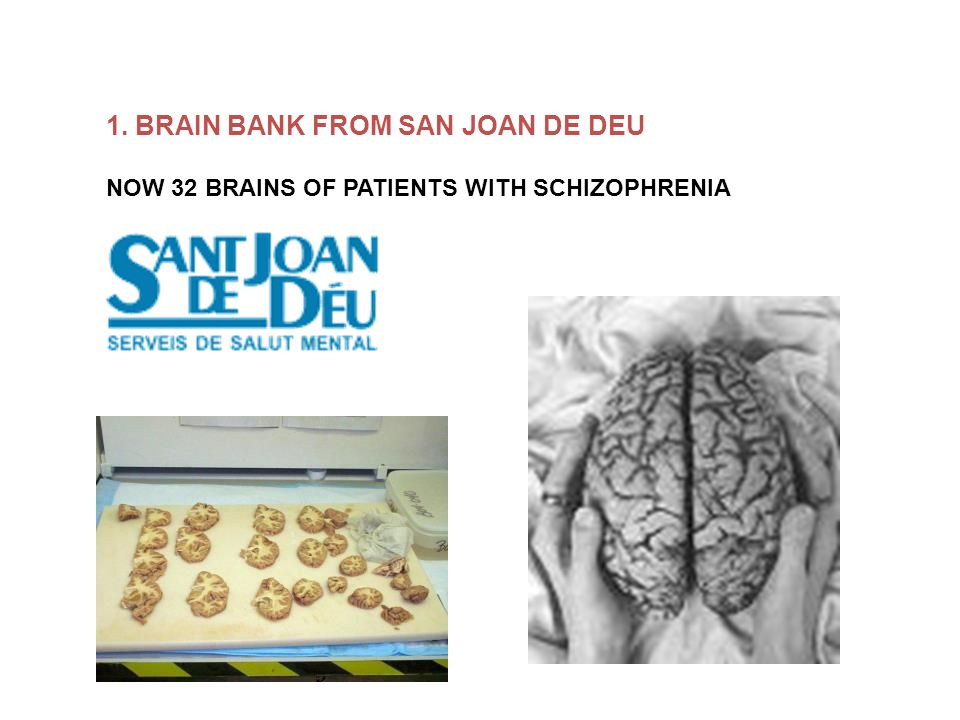 1. BRAIN BANK FROM SAN JOAN DE DEU