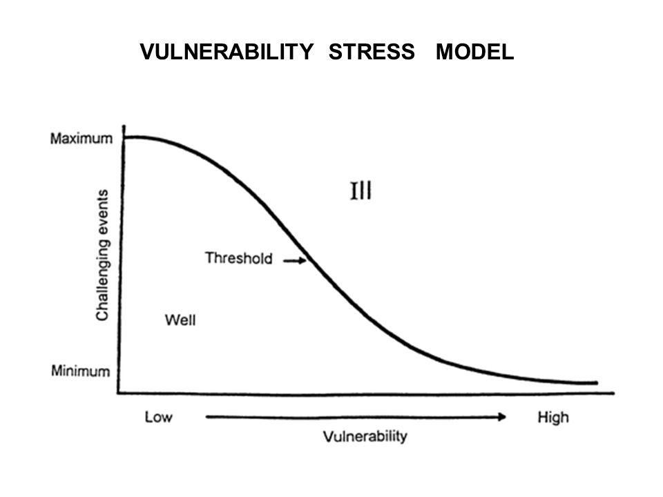 VULNERABILITY STRESS MODEL