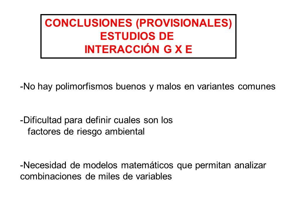 CONCLUSIONES (PROVISIONALES)