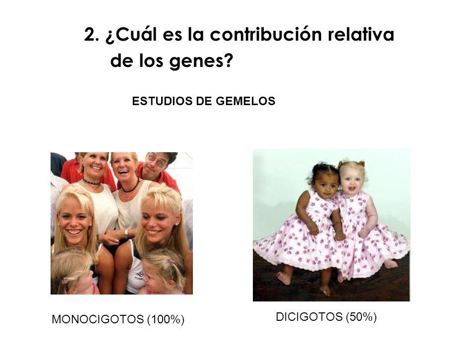 2. ¿Cuál es la contribución relativa de los genes