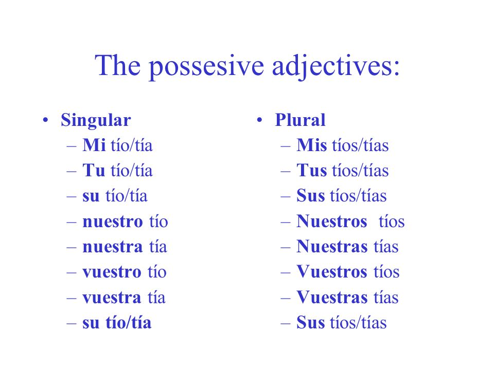 The possesive adjectives: