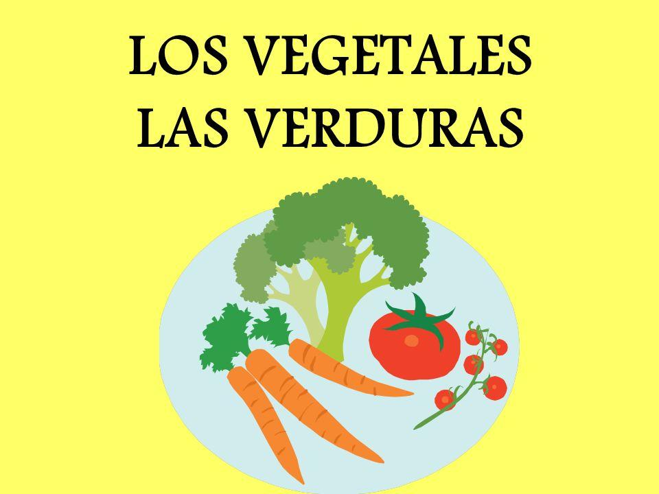 LOS VEGETALES LAS VERDURAS