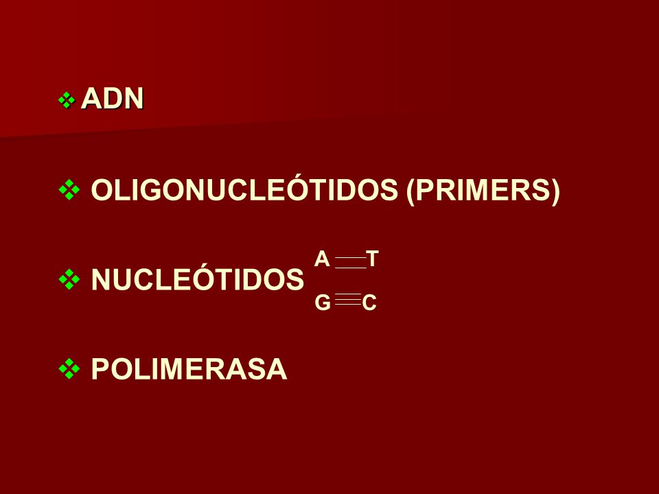 OLIGONUCLEÓTIDOS (PRIMERS)