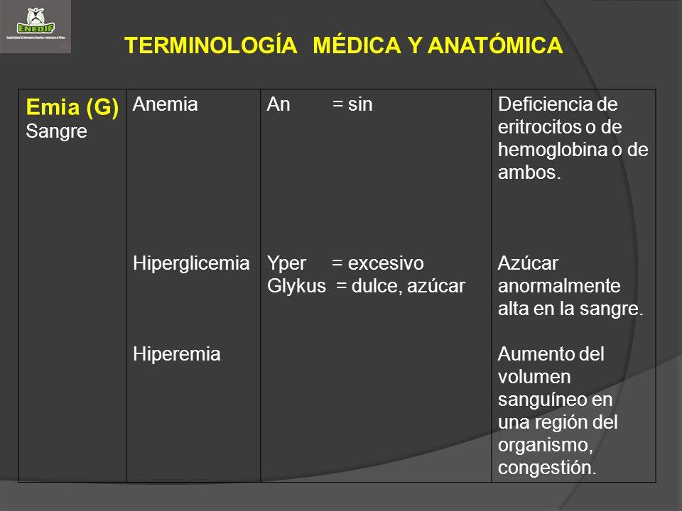 TERMINOLOGÍA MÉDICA Y ANATÓMICA