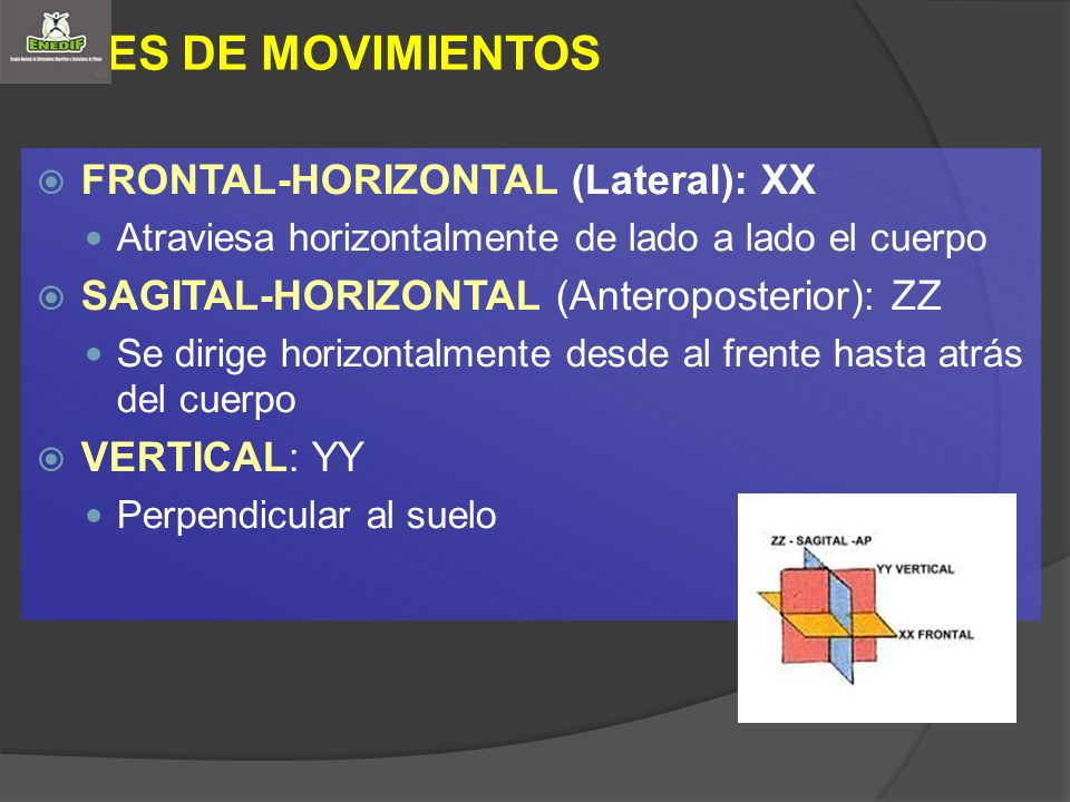 EJES DE MOVIMIENTOS FRONTAL-HORIZONTAL (Lateral): XX