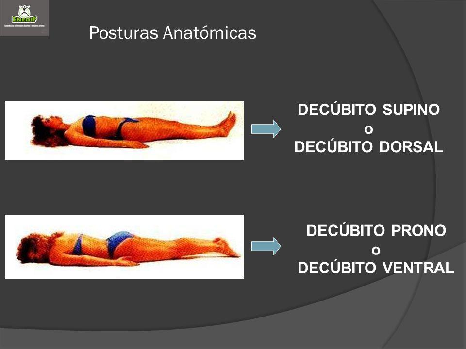 Posturas Anatómicas DECÚBITO SUPINO o DECÚBITO DORSAL DECÚBITO PRONO o