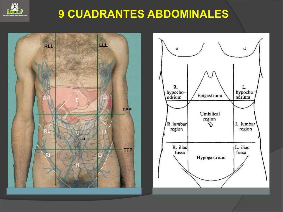 9 CUADRANTES ABDOMINALES