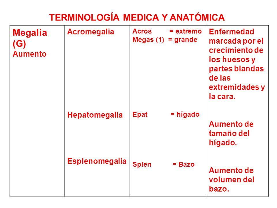 Famoso Terminología Médica Y Anatomía En Línea Curso Modelo ...