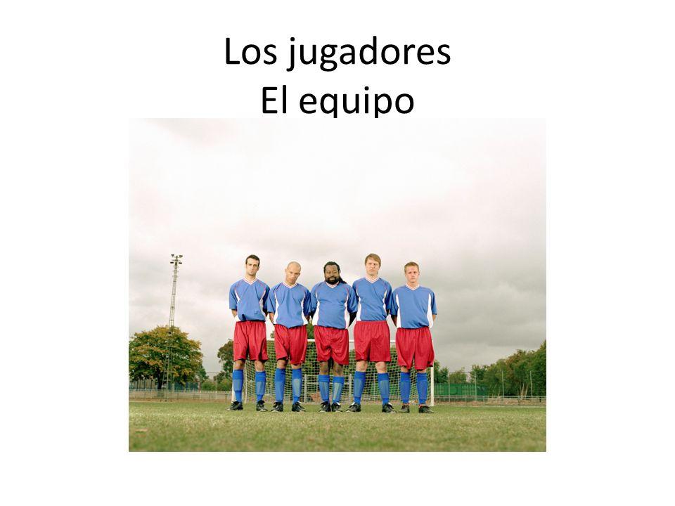 Los jugadores El equipo