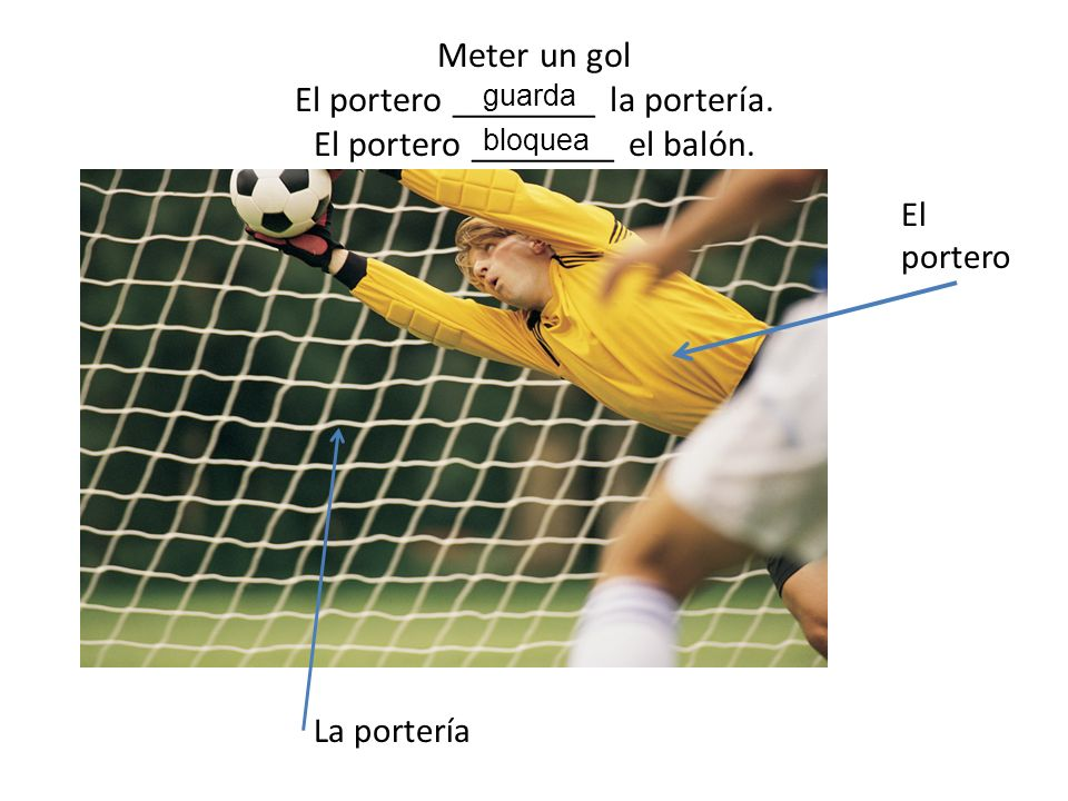 Meter un gol El portero ________ la portería
