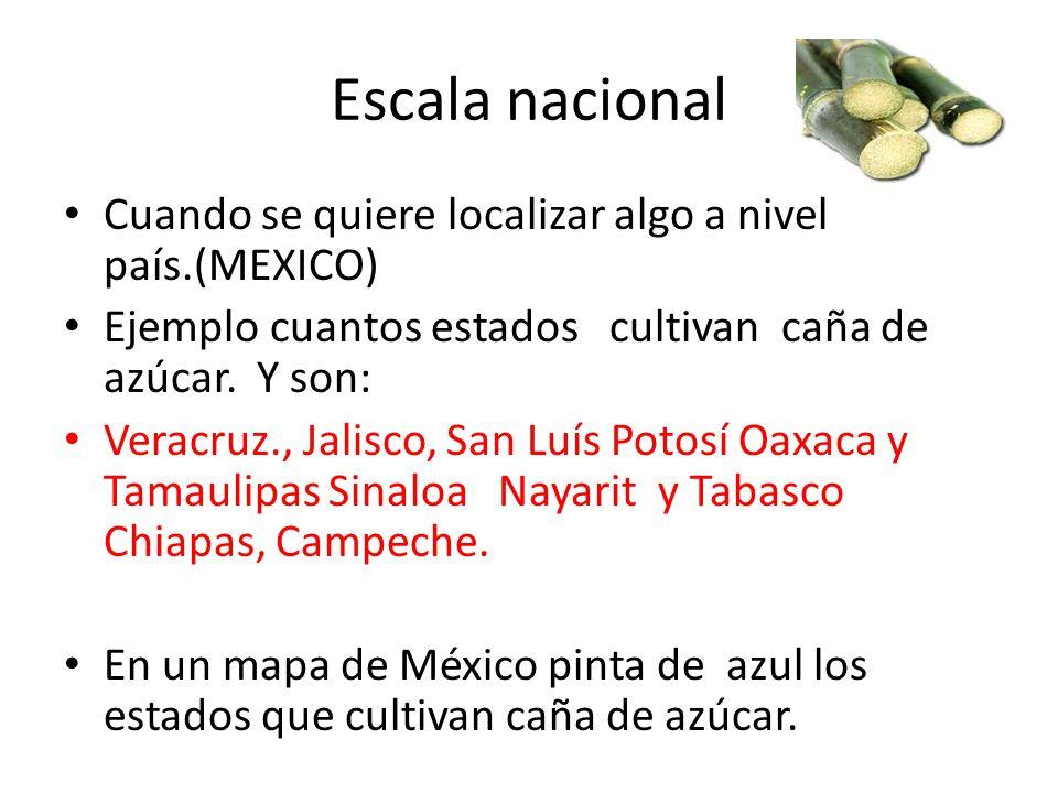Escala nacional Cuando se quiere localizar algo a nivel país.(MEXICO)