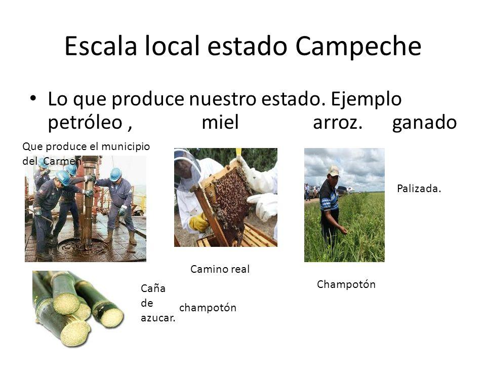 Escala local estado Campeche