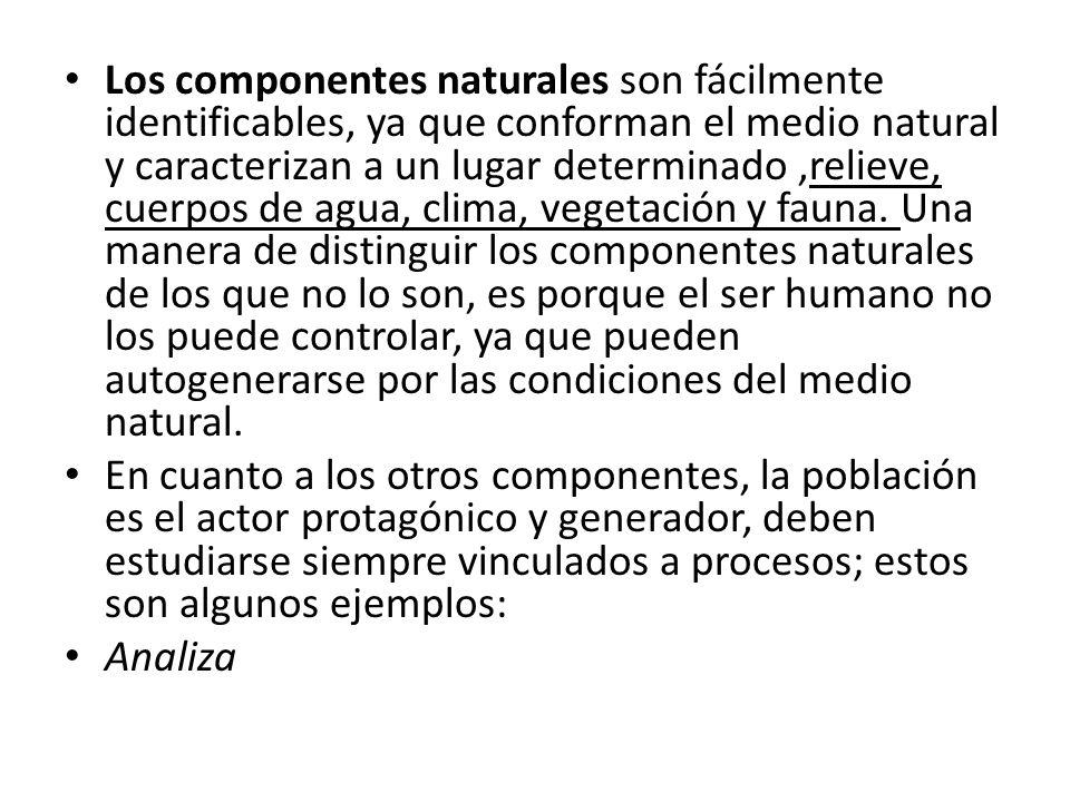 Los componentes naturales son fácilmente identificables, ya que conforman el medio natural y caracterizan a un lugar determinado ,relieve, cuerpos de agua, clima, vegetación y fauna. Una manera de distinguir los componentes naturales de los que no lo son, es porque el ser humano no los puede controlar, ya que pueden autogenerarse por las condiciones del medio natural.