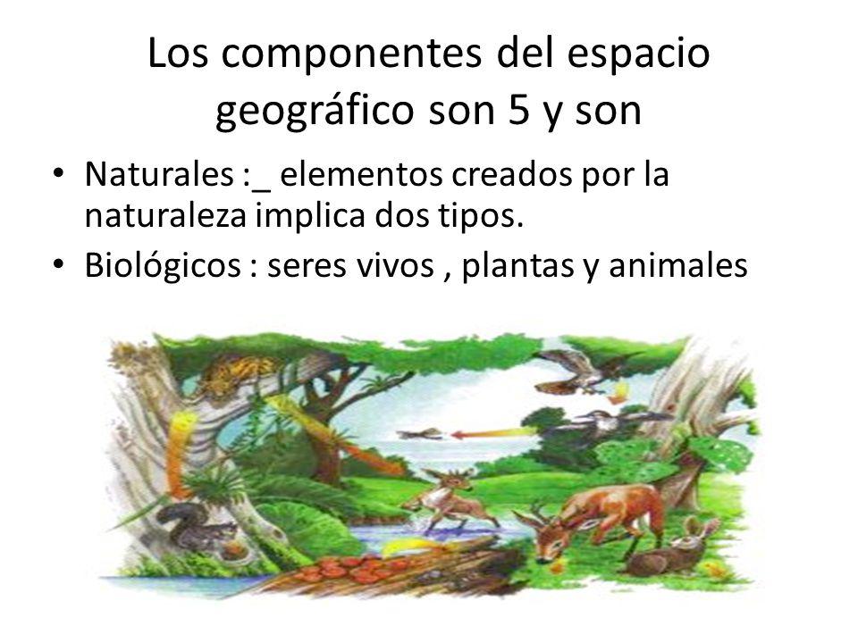Los componentes del espacio geográfico son 5 y son