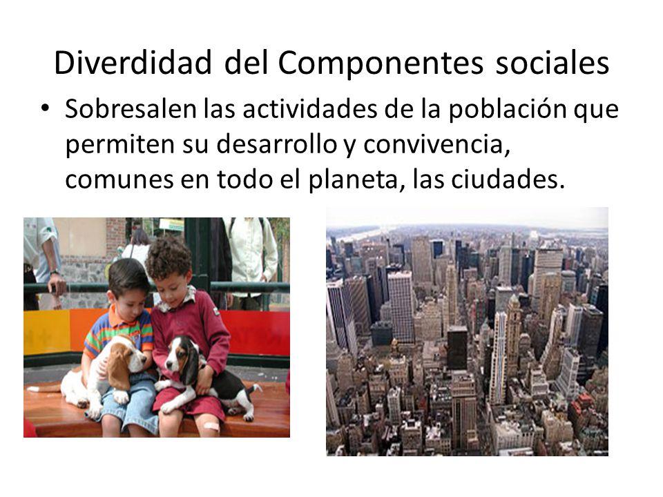 Diverdidad del Componentes sociales