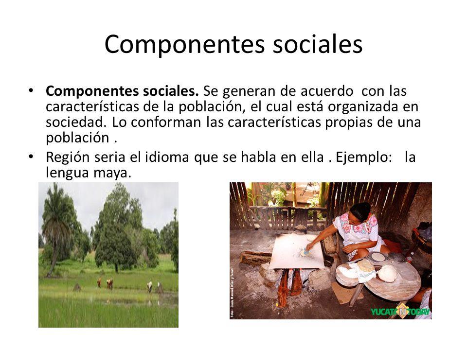 Componentes sociales