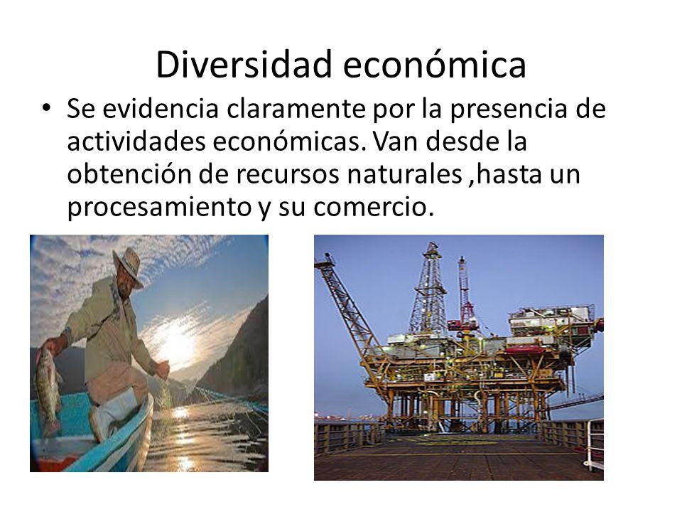 Diversidad económica