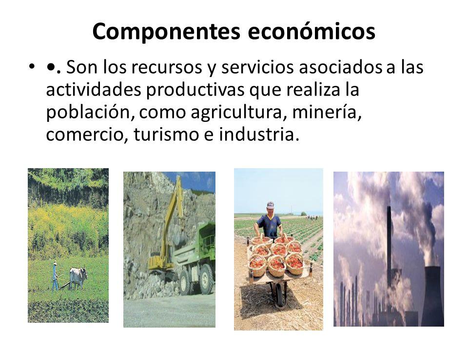 Componentes económicos