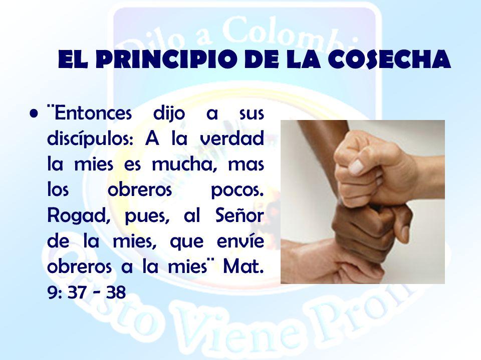 EL PRINCIPIO DE LA COSECHA