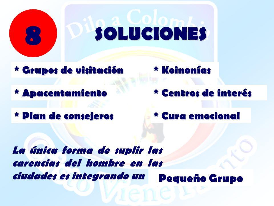 8 SOLUCIONES Pequeño Grupo * Grupos de visitación * Koinonías