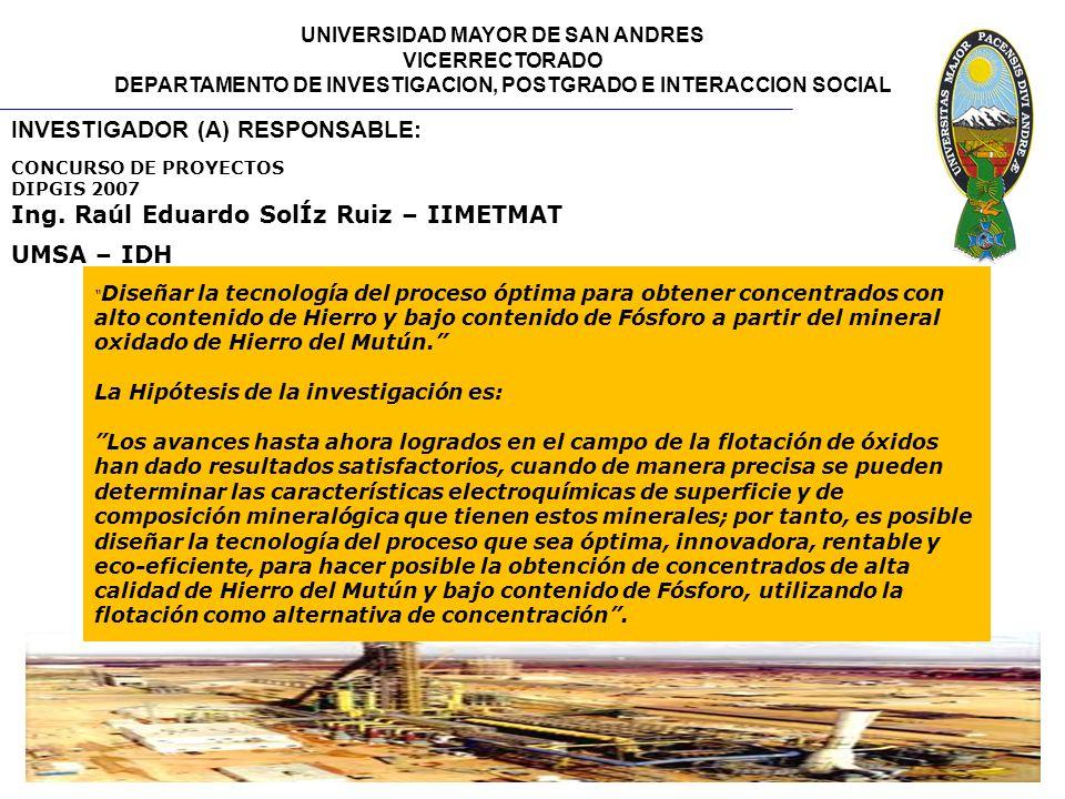 INVESTIGADOR (A) RESPONSABLE: