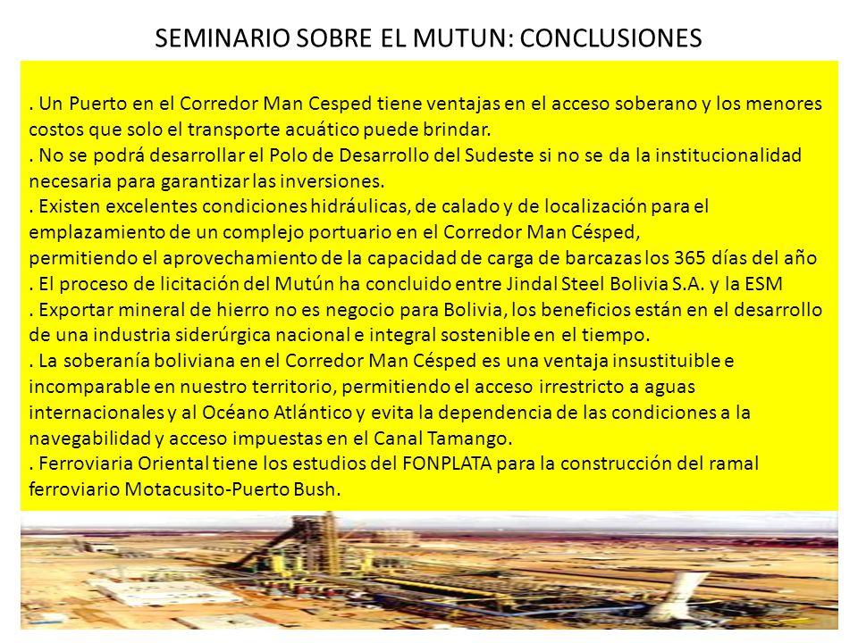 SEMINARIO SOBRE EL MUTUN: CONCLUSIONES