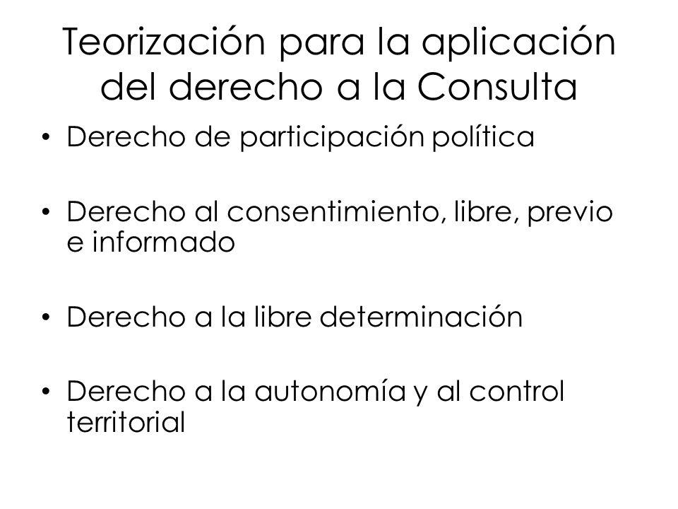 Teorización para la aplicación del derecho a la Consulta
