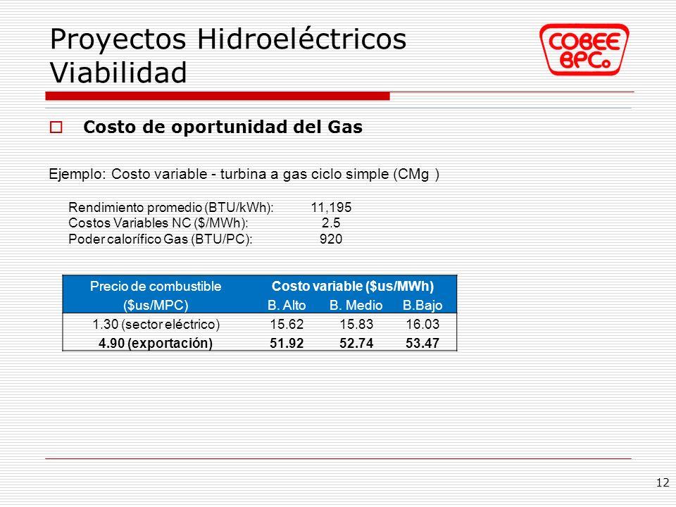 Proyectos Hidroeléctricos Viabilidad