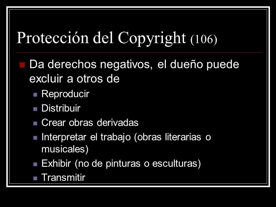 Protección del Copyright (106)