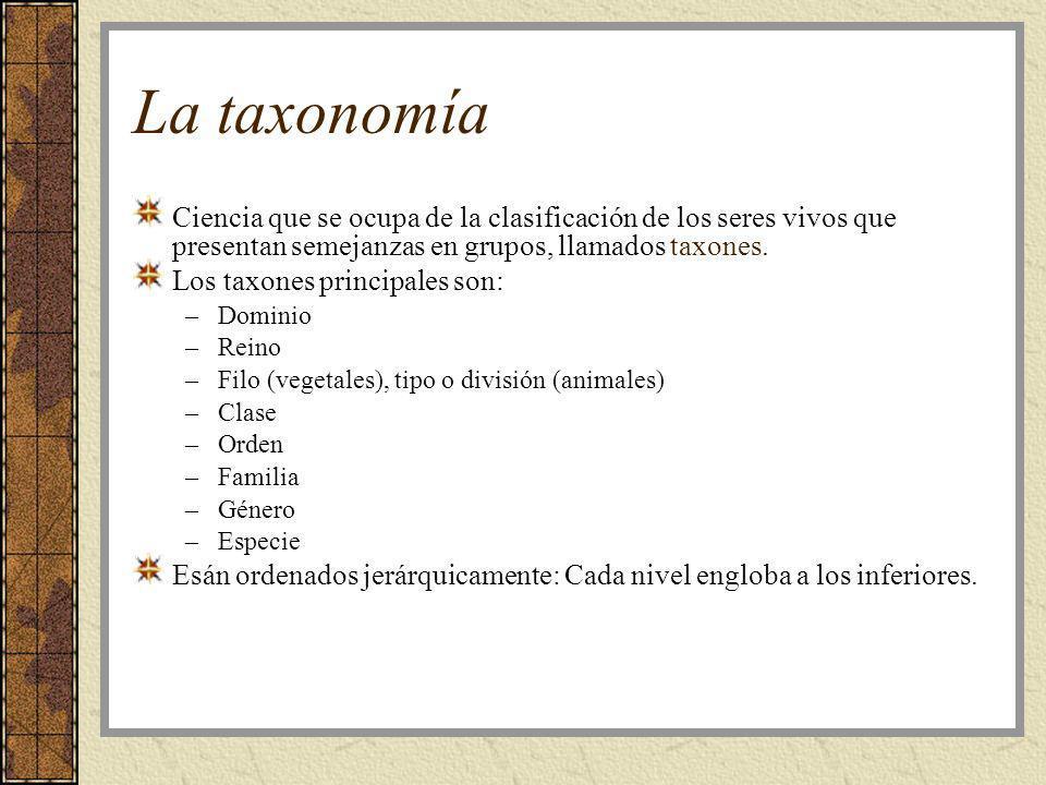 La taxonomía Ciencia que se ocupa de la clasificación de los seres vivos que presentan semejanzas en grupos, llamados taxones.
