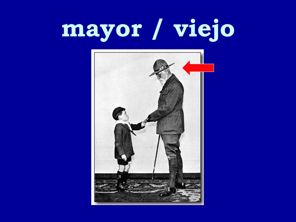 mayor / viejo