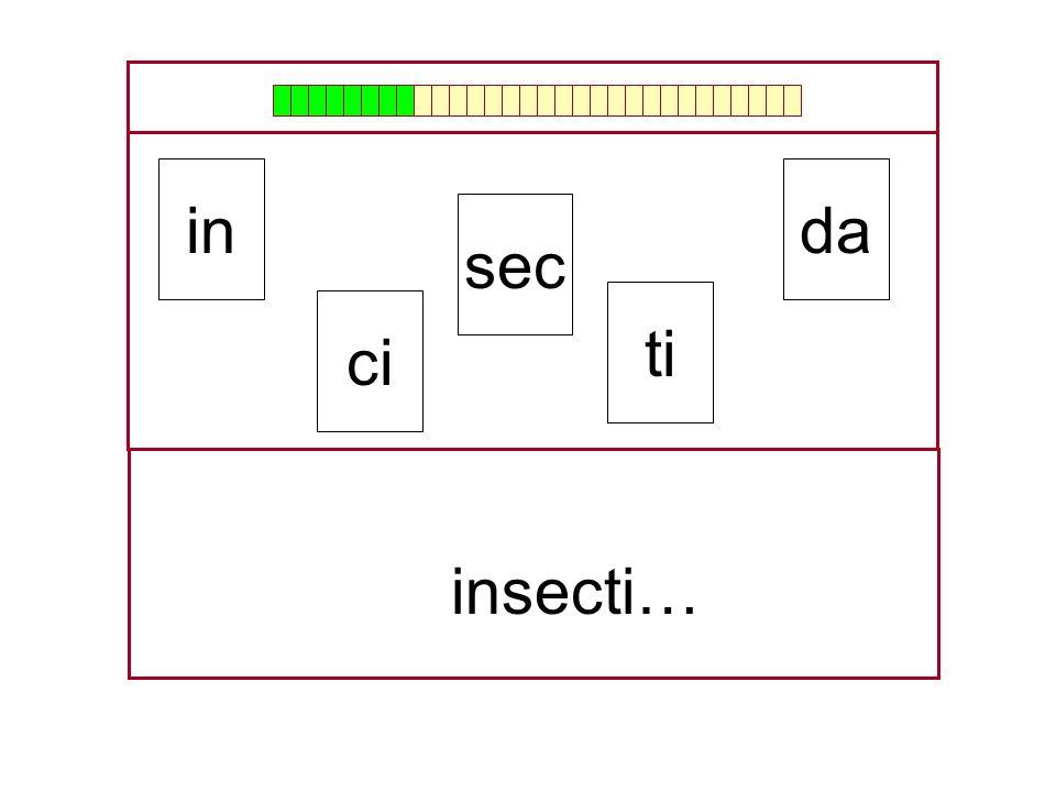 in da sec ti ci insecti… …