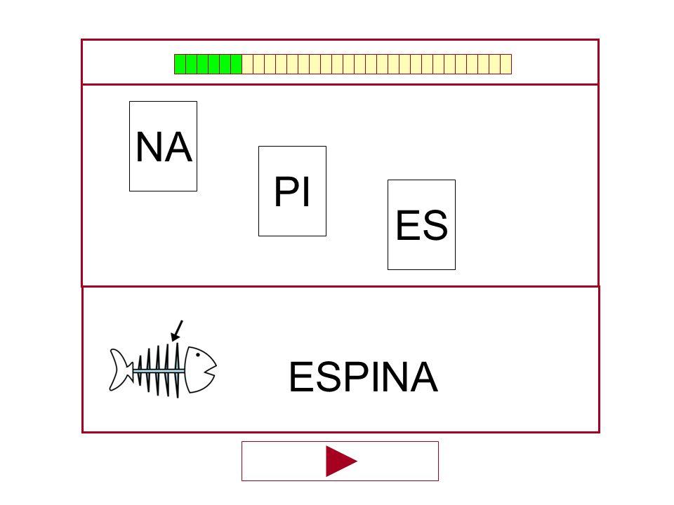 NA PI ES ESPINA …